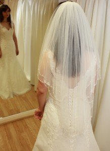 Wedding Veil - Beaded Edge